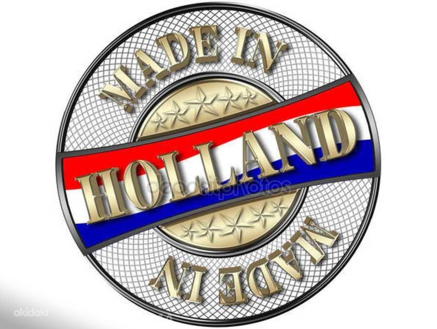 Töö Hollandis (foto #1)