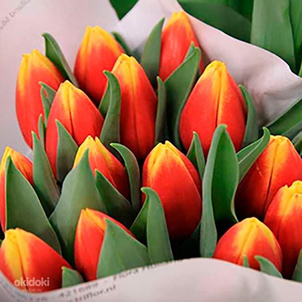 где купить голандский тюльпан в москве опыт работы торговле